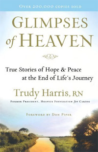 With 93 reviews, Glimpses of Heaven is today's highest-rated free nonfiction book.