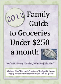 The Family Guide to Groceries for Under $250 a Month is today's highest-rated free food-related book.