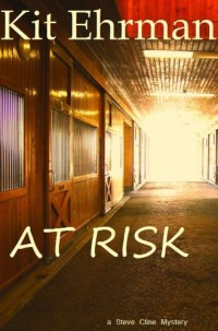 With over 400 reviews, mystery novel/thriller At Risk is today's highest-rated free Kindle book.