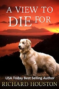 A view to die for is today's highest-rated free Kindle book.